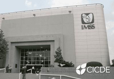 condonación de multas IMSS