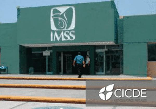 Dictamen auditoría del IMSS