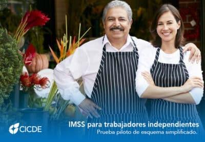 IMSS simplificado
